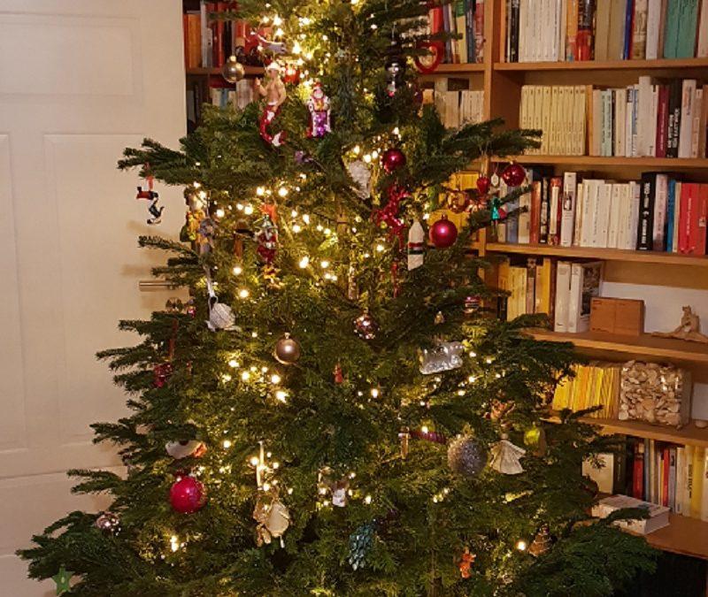 Nachhaltig Weihnachten feiern, Teil 2